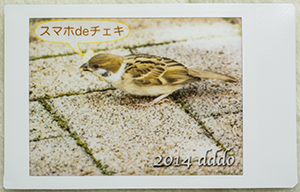 スマホdeチェキ:instax SHARE SP-1 macro photo of printout 2