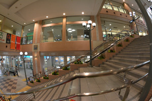 AF DX Fisheye-Nikkor 10.5mm f2.8G ED sample photo 斜め上下左右が有効な構図