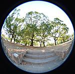 庭園(?巨大植え込み?)への階段、円周魚眼写真 Sigma 4.5mm f2.8 circular fisheye