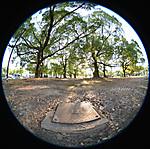 庭園(?巨大植え込み?)と鉄のフタ、円周魚眼写真 Sigma 4.5mm f2.8 circular fisheye