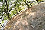 庭園(?巨大植え込み?)と鉄のフタ、対角線魚眼写真 Nikon AF DX Fisheye-Nikkor 10.5mm f/2.8G ED