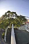 陸橋の上から階段を見下ろして、対角線魚眼写真 Nikon AF DX Fisheye-Nikkor 10.5mm f/2.8G ED