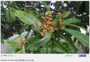 RICOH THETA / リコー・シータ作例:みのりの秋