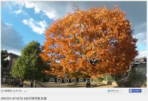 RICOH THETA / リコー・シータ作例:紅葉