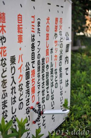 RICOH THETA / リコー・シータ