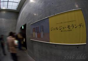 兵庫県立美術館 ジョルジョ・モランディ展 入口