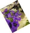 A060413flower2741