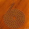 Gold chain/金鎖(Photo/写真)